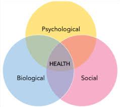 Psychiatry, Mental health, Depression, Addiction, Opioid treatment, Suboxone, Medical marijuana, Women's mental health, Bipolar disorder, Personality disorders, Anxiety disorders, Postpartum mental health, Perinatal mental health, Pittsburgh